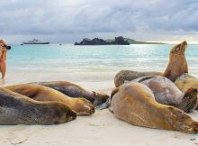 Galapagos Land-Based Tours